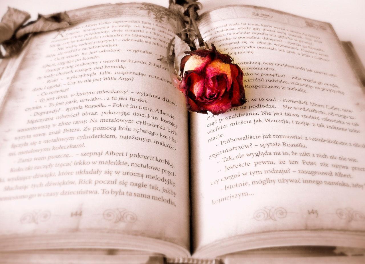 libro con una rosa