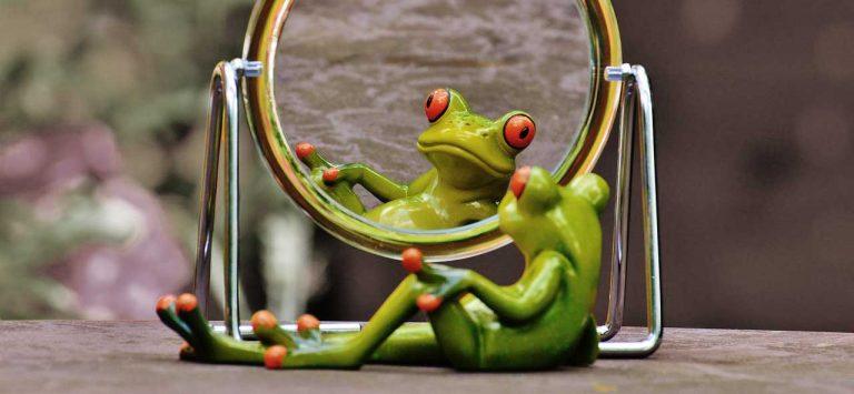 estatuilla rana mirándose a un espejo
