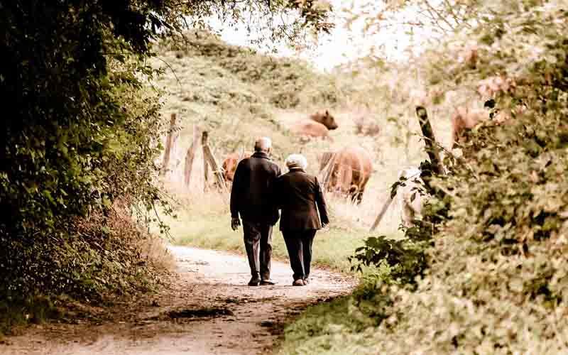 Adultos mayores caminando en el campo