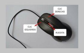 el mouse y sus partes
