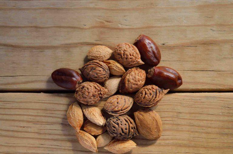semillas variadas para la salud