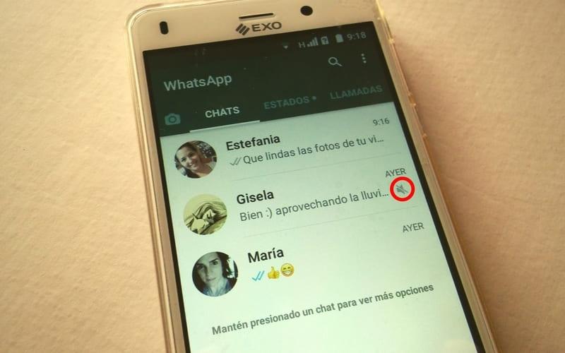 como silenciar chat en whatsapp