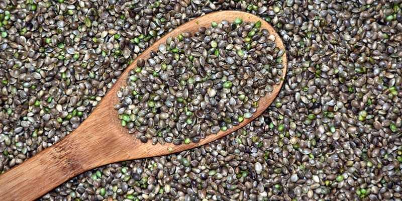 cucharada de semillas de cañamo