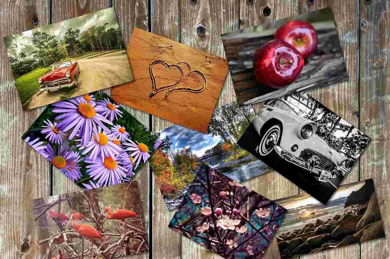 collage que puedes crear con un editor de fotos