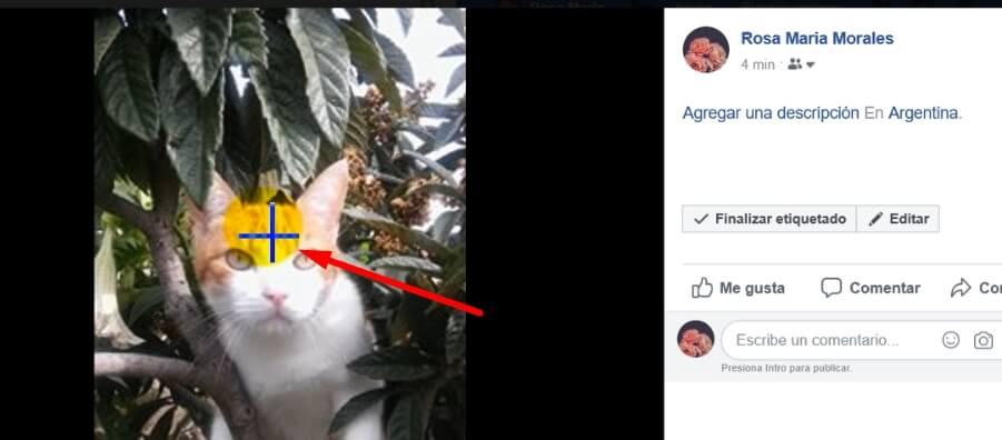 como etiquetar foto en facebook